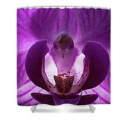 Bird In The Orchid Shower Curtain