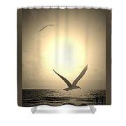 Bird In The Sunset Shower Curtain