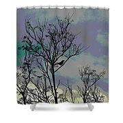 Bird In Tree Silhouette Iv Abstract Shower Curtain