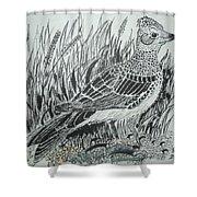 Skyirk Bird Shower Curtain