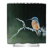 Bird N.10 Shower Curtain