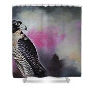 Bird N.11 Shower Curtain