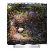 Bird Nest With Egg Shower Curtain