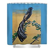 Bird Of Beauty, Ngiculela Shower Curtain