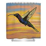 Bird Of Beauty, Superwoman Shower Curtain