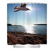 Bird Of Life Shower Curtain