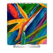 Bird Of Paradise Flower #66 Shower Curtain