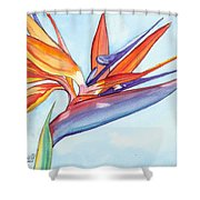 Bird Of Paradise IIi Shower Curtain