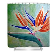 Bird Of Paradise, Noon Shower Curtain