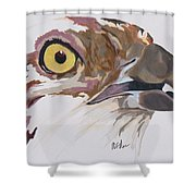 Bird Of Prey  Osprey Shower Curtain