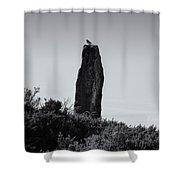 Bird On A Standing Stone Shower Curtain