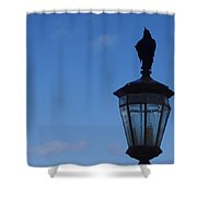 Bird On Lamplight Shower Curtain
