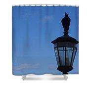 Bird On Lamplight Shower Curtain