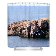 Bird Rock Shower Curtain