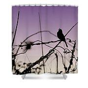 Bird Sings Shower Curtain