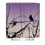 Bird Sings Shower Curtain
