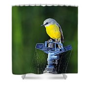 Bird Siting On A Water Sprinkler Shower Curtain