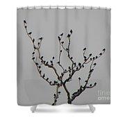 Bird Stop Shower Curtain