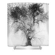 Bird Tree Land Bw Fine Art Print Shower Curtain