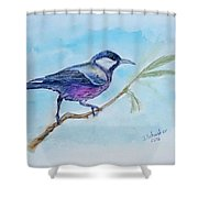 Bird. Watercolor Shower Curtain