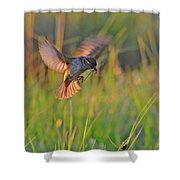Bird With Prey Shower Curtain
