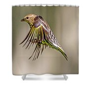 Bird2 Shower Curtain