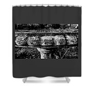 Birdbath In Black And White  Shower Curtain