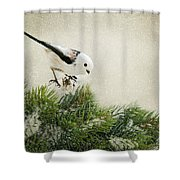 Birdie Stilllife Shower Curtain