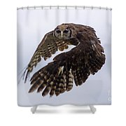 Birds 48 Shower Curtain