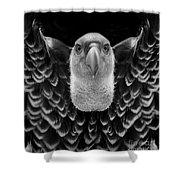 Birds 50 Shower Curtain