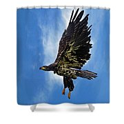 Birds 53 Shower Curtain