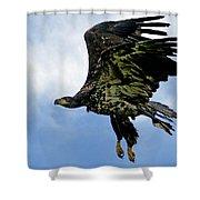 Birds 54 Shower Curtain