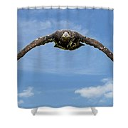 Birds 60 Shower Curtain