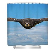 Birds 64 Shower Curtain