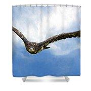 Birds 67 Shower Curtain
