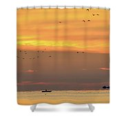 Birds And Canoe At Lake Simcoe 2  Shower Curtain