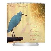 Birds And Fun At Butler Park Austin - Birds 3 Detail Macro Poster - Good Morning Shower Curtain