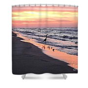 Birds At Water's Edge Shower Curtain