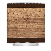Birds-eye Pattern On Sugar Maple Wood Abstract In Nature Shower Curtain