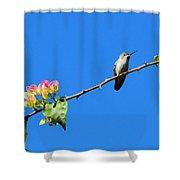 Bird's Eye View Shower Curtain