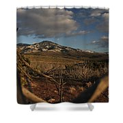 Bird's Eye View Shower Curtain