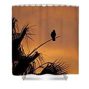 Birds Eye View Photograph Shower Curtain