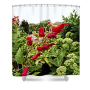 Birds In A Tree Flowers Shower Curtain