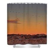 Birds In Flight At Sunrise Shower Curtain