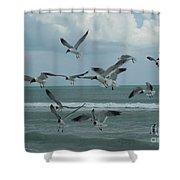 Birds In Flight Shower Curtain