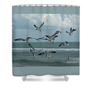 Birds In Flight Shower Curtain