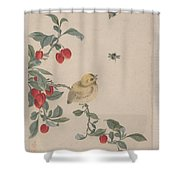 Birds Insects And Flowers Shower Curtain