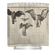 Birds Nailed To A Barn Door (le Haut D'un Battant De Porte) Shower Curtain