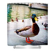 Birds Of The River Shower Curtain
