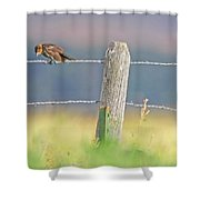 Birds On A Barbed Wire Fence Shower Curtain